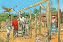DGS2-Paramaribo,1843